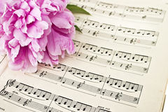 Sheet Music. Peony and stained vintage sheet music Stock Images