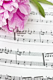 Sheet Music. Stained vintage sheet music and peonies Royalty Free Stock Image