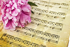 Sheet music. Photo based illustration of peony on sheet music Stock Photos