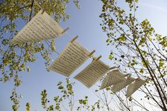 Sheet music in the wind .. Sheet music blowing outdoor in the wind with trees and blue sky in the background royalty free stock images