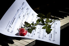 Sheet music with rose piano. Deep Red Rose on Piano keys - horizontal view Stock Image