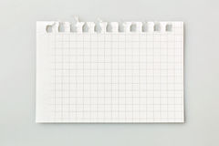 Sheet from a notebook Stock Image
