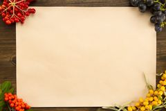 Sheet old vintage paper with different berries on aged wooden background. Healthy vegetarian food. Stock Image