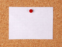 Sheet of paper. Sheet of paper pinned on a pinboard Royalty Free Stock Photo