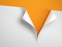 Sheet of paper with the curled corner. 3d rendering Royalty Free Stock Photos