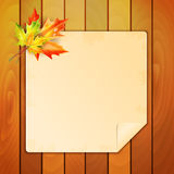Sheet of paper decorated with autumn maple leaves Stock Images