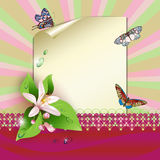 Sheet of paper and flowers. Sheet of paper, flowers, butterflies and drops vector illustration