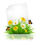 Sheet of paper with grass and spring flowers. Stock Photo
