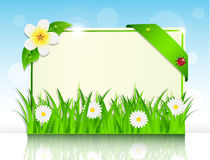 Sheet of paper in the green grass and flowers. On the background of sky Royalty Free Stock Photos