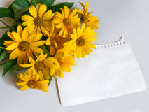 A sheet of paper and yellow flowers Royalty Free Stock Images
