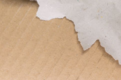 A sheet of torn paper Stock Photo