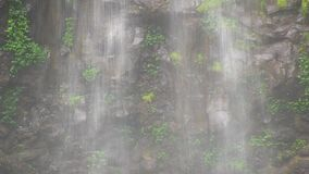 Sheet of water falling in front of basalt cliff face. This region of Australia, sustains an indigenous ecology named `dry rainforest`, that is World Heritage stock footage