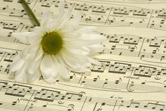 Sheetmusic Royalty Free Stock Images
