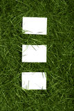 Sheets and grass Royalty Free Stock Images