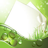 Sheets of paper and clover Royalty Free Stock Images