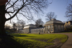 Sheffield Ogród Botaniczny Glasshouses Obraz Stock