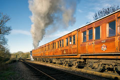 SHEFFIELD PARK, EAST SUSSEX/UK - NOVEMBER 22 : Bluebell leaving Stock Images
