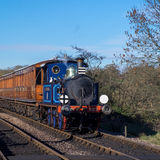 SHEFFIELD PARK, EAST SUSSEX/UK - NOVEMBER 22 : Bluebell Steam Tr Royalty Free Stock Image