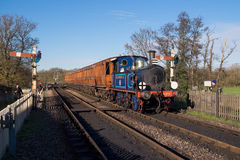 SHEFFIELD PARK, EAST SUSSEX/UK - NOVEMBER 22 : Bluebell Steam Tr Stock Photo