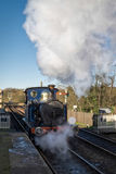 SHEFFIELD PARK, EAST SUSSEX/UK - NOVEMBER 22 : Bluebell Steam Tr Stock Photography