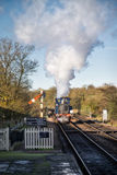 SHEFFIELD PARK, EAST SUSSEX/UK - NOVEMBER 22 : Bluebell Steam Tr Stock Photos