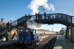SHEFFIELD PARK, EAST SUSSEX/UK - NOVEMBER 22 : Bluebell Steam Tr Stock Images