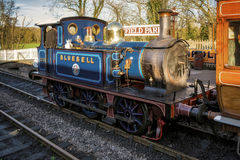 SHEFFIELD PARK, EAST SUSSEX/UK - NOVEMBER 22 : Bluebell Steam Tr Stock Image
