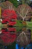 Sheffield Park Gardens Stock Image