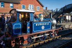 SHEFFIELD-PARK, OST-SUSSEX/UK - 22. NOVEMBER: Glockenblume-Dampf Tr Lizenzfreie Stockfotos