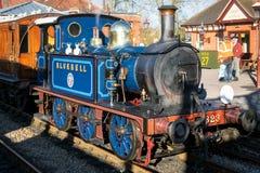 SHEFFIELD-PARK, OST-SUSSEX/UK - 22. NOVEMBER: Glockenblume-Dampf Tr Lizenzfreies Stockfoto