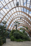 Sheffield winter gardens Royalty Free Stock Image