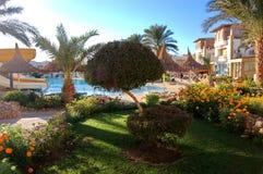 Sheih d'Al de Sharm Photos libres de droits