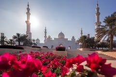 Sheikh Zayed Grand Mosque mit Blumen in Abu Dhabi, Vereinigte Arabische Emirate Lizenzfreies Stockfoto