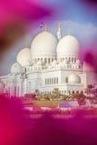 Sheikh Zayed Grand Mosque mit Blumen in Abu Dhabi, Vereinigte Arabische Emirate Lizenzfreie Stockfotografie