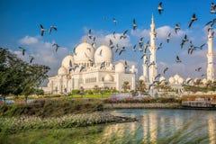 Sheikh Zayed Grand Mosque mit Vögeln, Abu Dhabi, Vereinigte Arabische Emirate Lizenzfreie Stockfotografie
