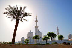 Sheikh Zayed Grand Mosque during sunset Royalty Free Stock Photos