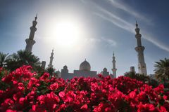 Sheikh Zayed mosque in Abu Dhabi, United Arab Emirates, Middle East Stock Photo