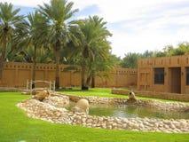Sheikhs`-bad, UAE royaltyfria foton