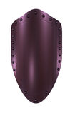 Sheild purple Royalty Free Stock Photos