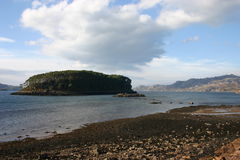 Sheildaig (Wester Ross). One of the many islands in Loch Sheildaig north west Scotland Royalty Free Stock Photos