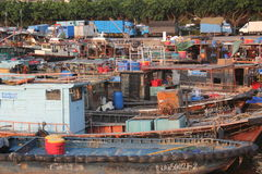 Shekou fiskeport i SHENZHEN KINA AISA Royaltyfri Bild