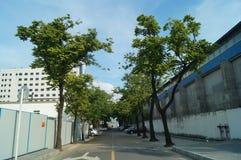 Shekou in Shenzhen road traffic Stock Photography