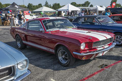 1966 Shelby Royalty-vrije Stock Afbeelding