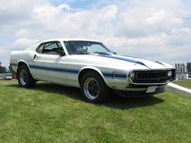 Shelby. Picture of the restored 1970 Shelby fastback. White with blue stripes stock photography