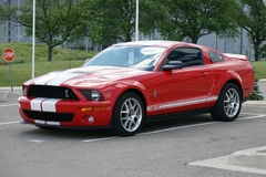 Shelby 2007 Royaltyfria Bilder