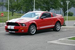Shelby Image stock