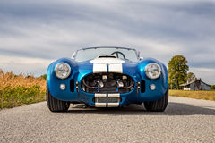1965 Shelby Cobra CSX Royalty-vrije Stock Foto's