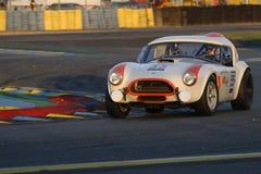 Shelby Cobra Stock Photography