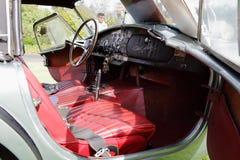Shelby Cobras στο δενδρολογικό κήπο του Λος Άντζελες Στοκ Φωτογραφίες