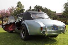 Shelby Cobras στο δενδρολογικό κήπο του Λος Άντζελες Στοκ εικόνα με δικαίωμα ελεύθερης χρήσης